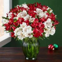 Peppermint Joy Double Bouquet and Green Vase