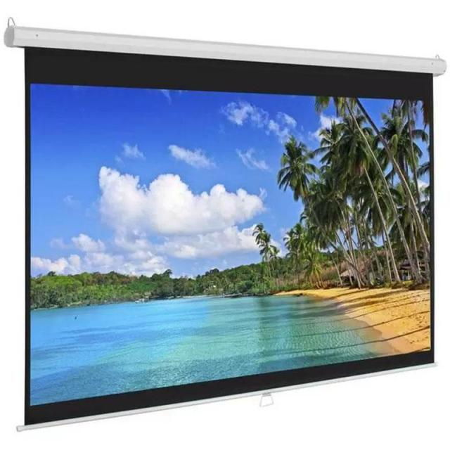 119in Pull Down Projector Screen for $40.99