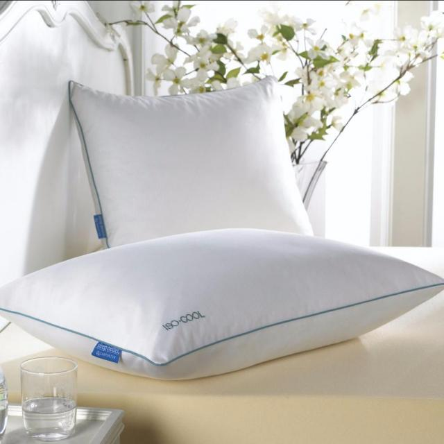 Isotonic Iso-Cool Synthetic Pillow for $13.99