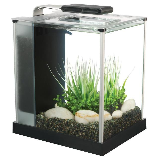 Fluval Spec III Aquarium Kit for $49.99