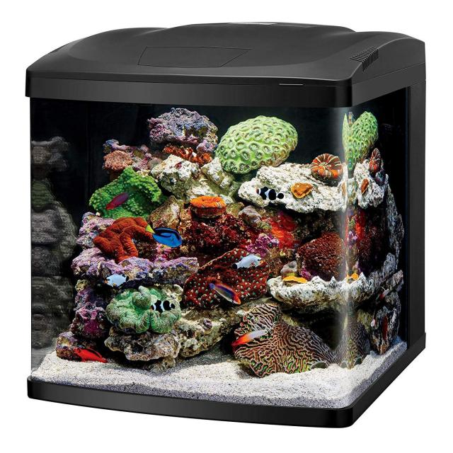 Coralife LED Biocube Aquarium LED for $271.99
