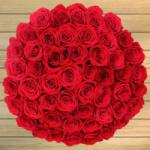 50 Valentines Day Roses for $49.99 Shipped